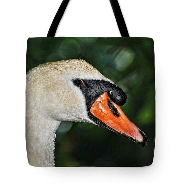 Bird - Swan - Mute Swan Close up Tote Bag by Paul Ward