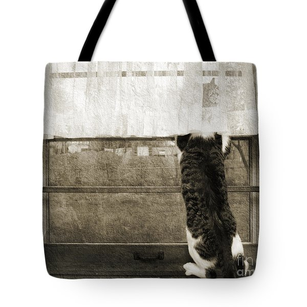 Bird Watching Kitty Cat Bw Tote Bag by Andee Design