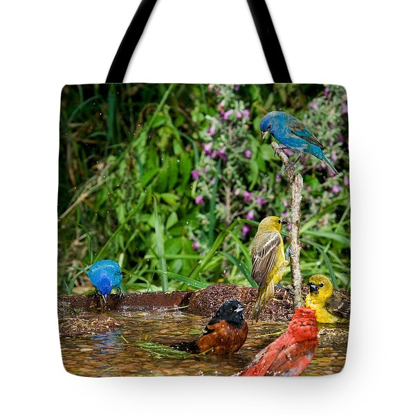 Birds Bathing Tote Bag by Anthony Mercieca