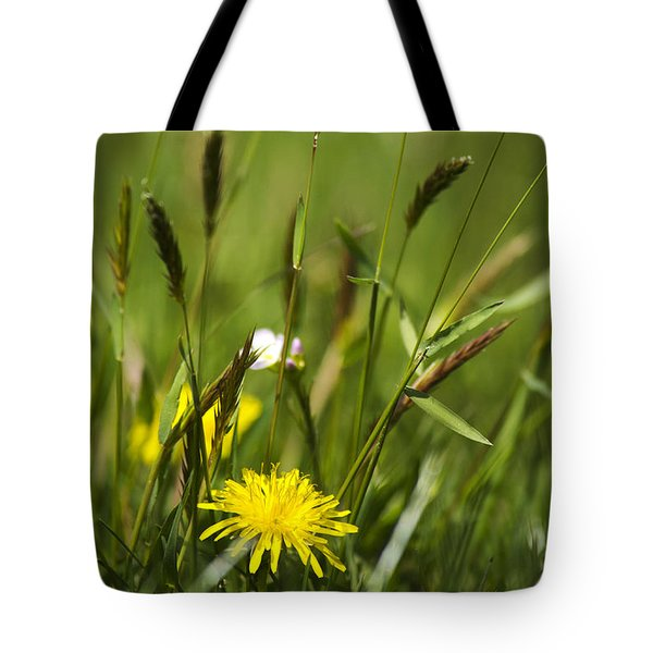 Bird's Eye View Tote Bag by Christina Rollo
