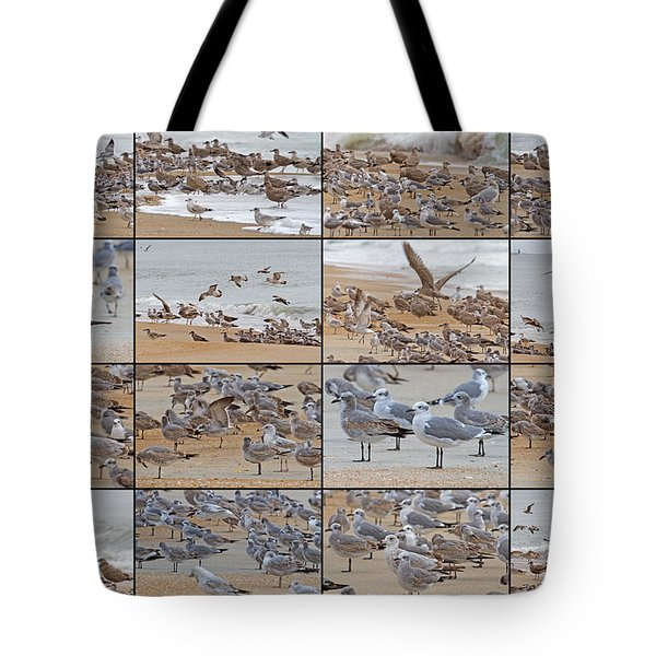 Birds Of Many Feathers Tote Bag by Betsy Knapp