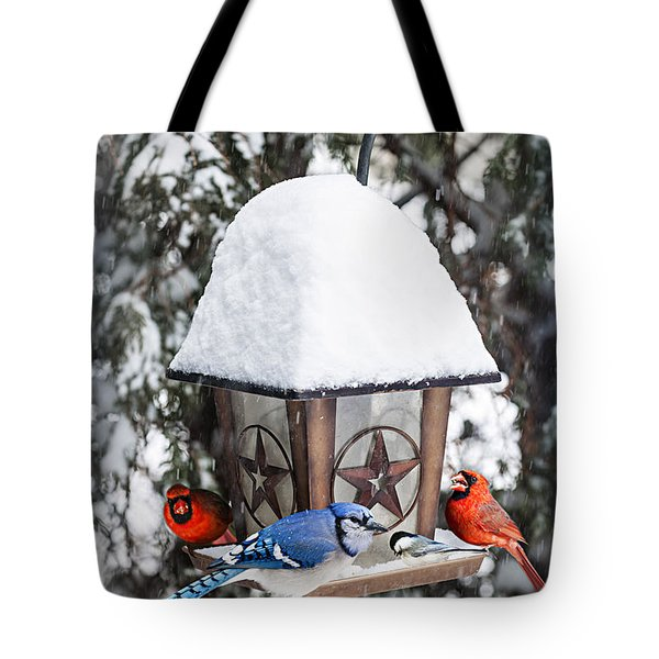 Birds on bird feeder in winter Tote Bag by Elena Elisseeva