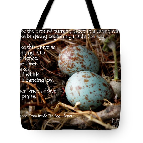 Birdsong From Inside The Egg Tote Bag by Lainie Wrightson