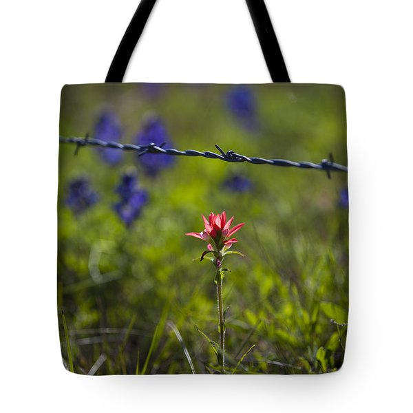 Bittersweet Imagery Tote Bag by Amber Kresge