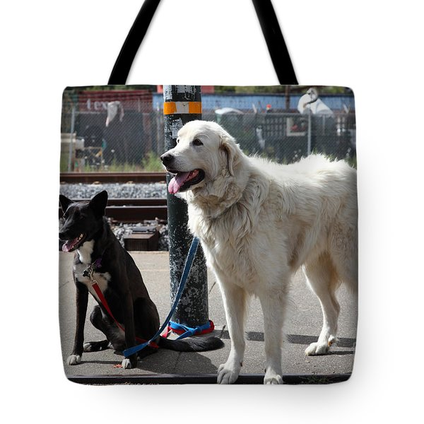 Black and White Dogs 5D25875 Tote Bag by Wingsdomain Art and Photography
