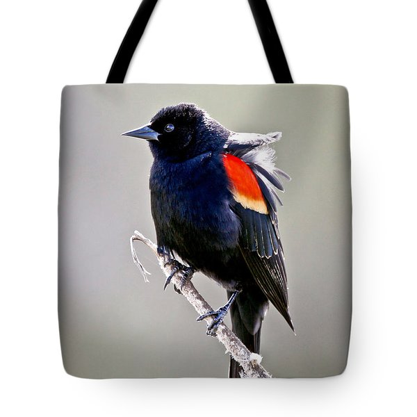 Black Bird Tote Bag by Athena Mckinzie