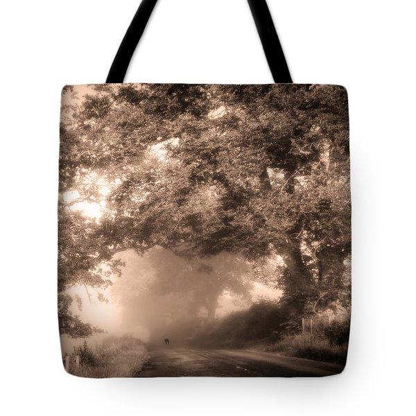 Black Dog On A Misty Road. Misty Roads Of Scotland Tote Bag by Jenny Rainbow