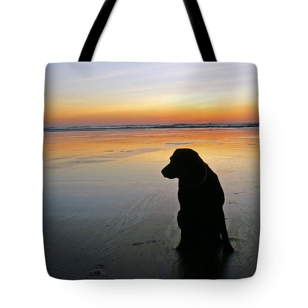 Black Dog Sundown Tote Bag by Pamela Patch
