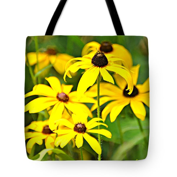 Black Eyed Susan 1 Tote Bag by Marty Koch