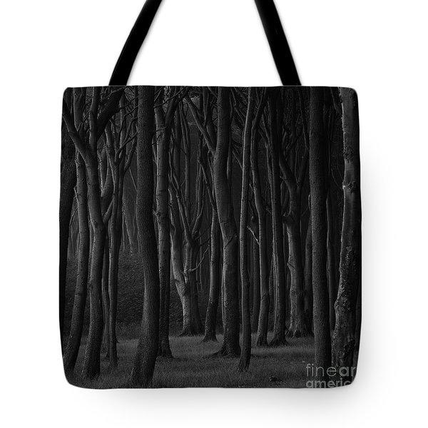 Black Forest Tote Bag by Heiko Koehrer-Wagner
