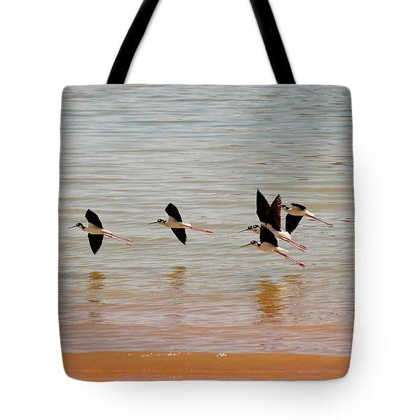 Black-necked Stilt - Lake Powell Tote Bag by Julie Niemela