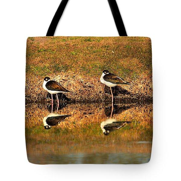 Black-necked Stilts Tote Bag by Robert Bales