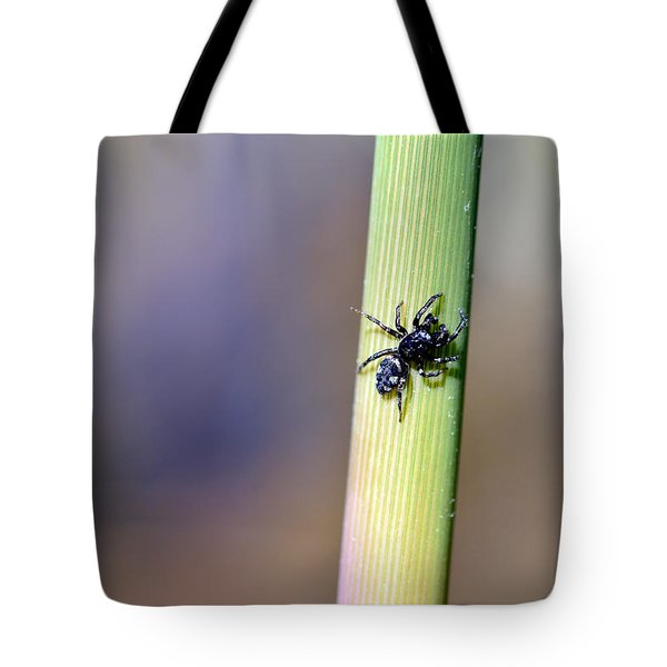 Black Spider In Reeds Tote Bag by Toppart Sweden