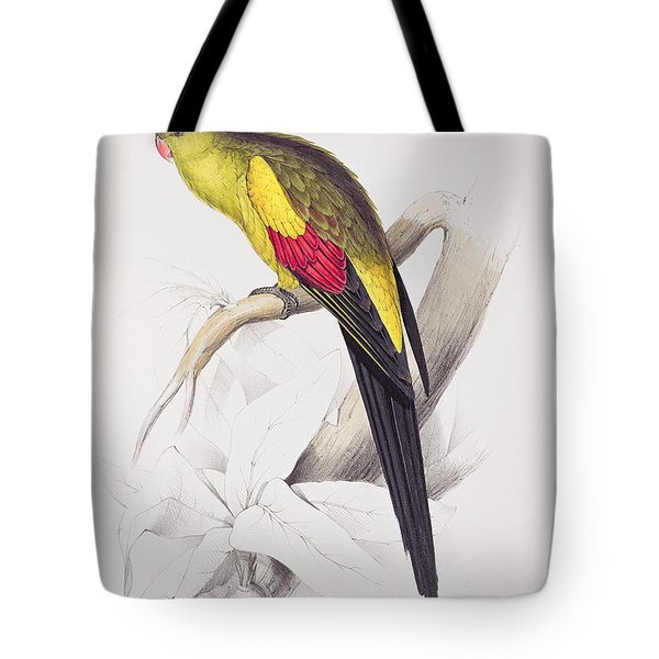 Black Tailed Parakeet Tote Bag by Edward Lear