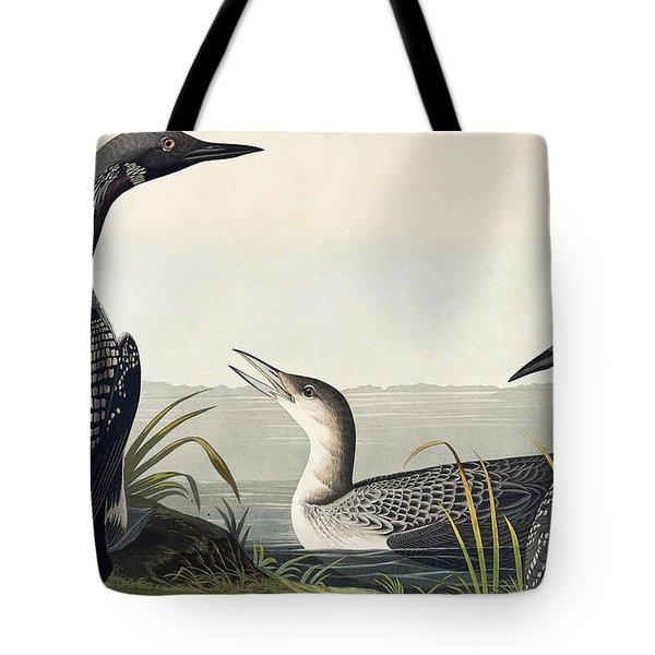 Black Throated Diver  Tote Bag by John James Audubon