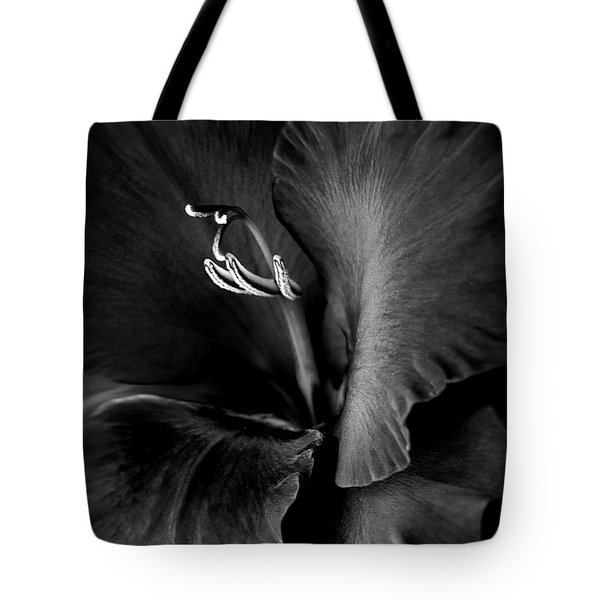 Black Velvet Gladiolia Flower Tote Bag by Jennie Marie Schell