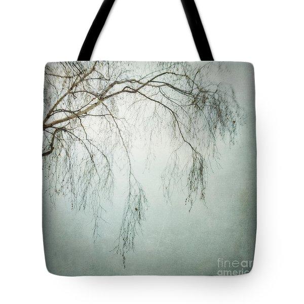 bleakly III Tote Bag by Priska Wettstein
