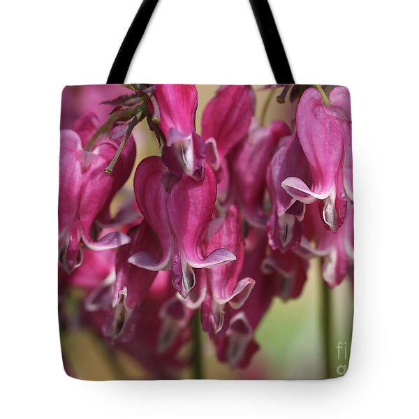 Bleeding Hearts Tote Bag by Deborah Benoit