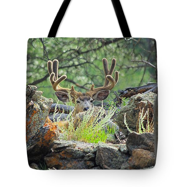 Blending In Tote Bag by Shane Bechler