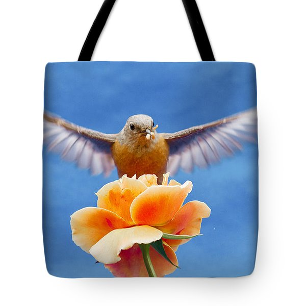 Bless  You Tote Bag by Jean Noren