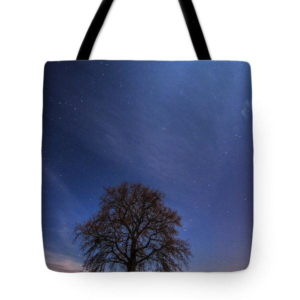 Blessed by the moon Tote Bag by Davorin Mance