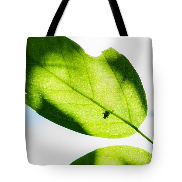 Blessed Days Of Warmth And Sun Tote Bag by Alexander Senin