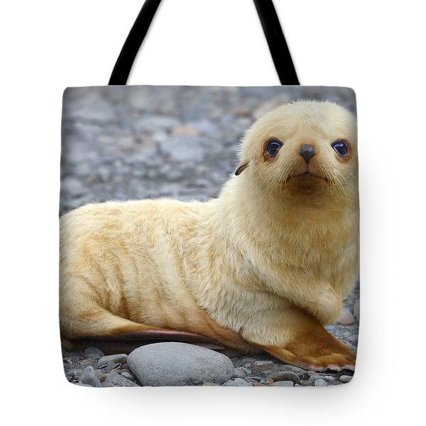Blondie Tote Bag by Tony Beck