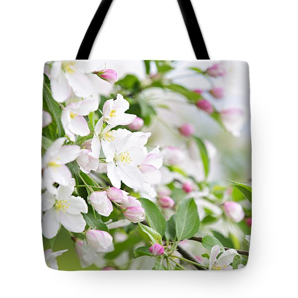 Blooming apple tree Tote Bag by Elena Elisseeva