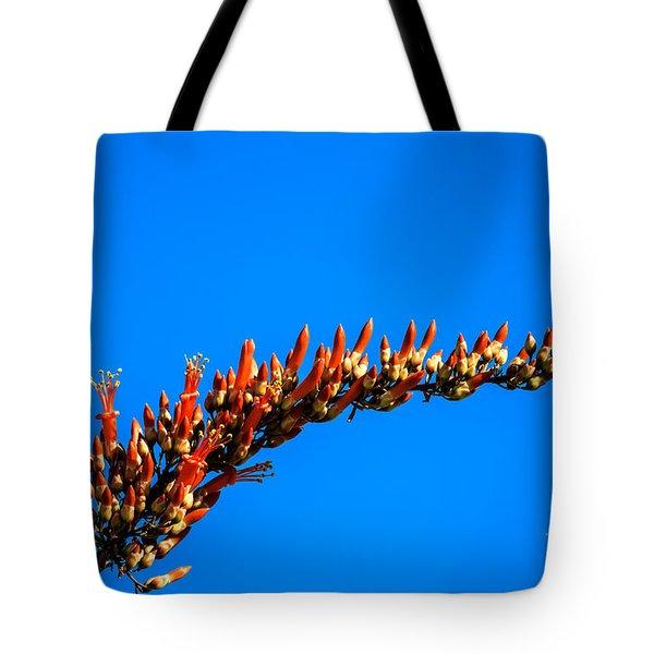 Blooming Ocotillo Tote Bag by Robert Bales
