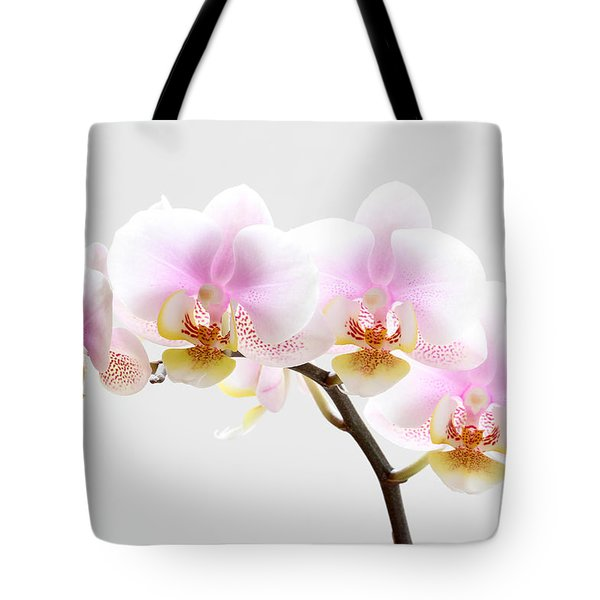 Blooms on White Tote Bag by Juergen Roth