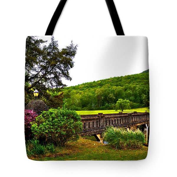 Blowing Spring Park Tote Bag by David Patterson