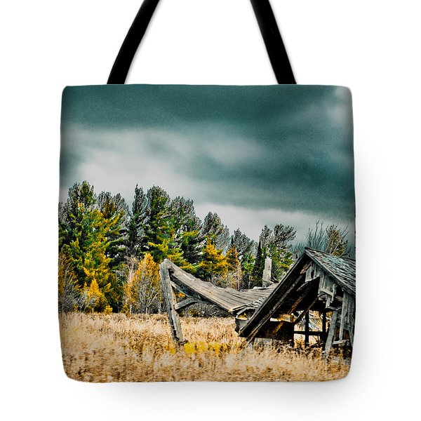 Blown Away Tote Bag by Maggy Marsh