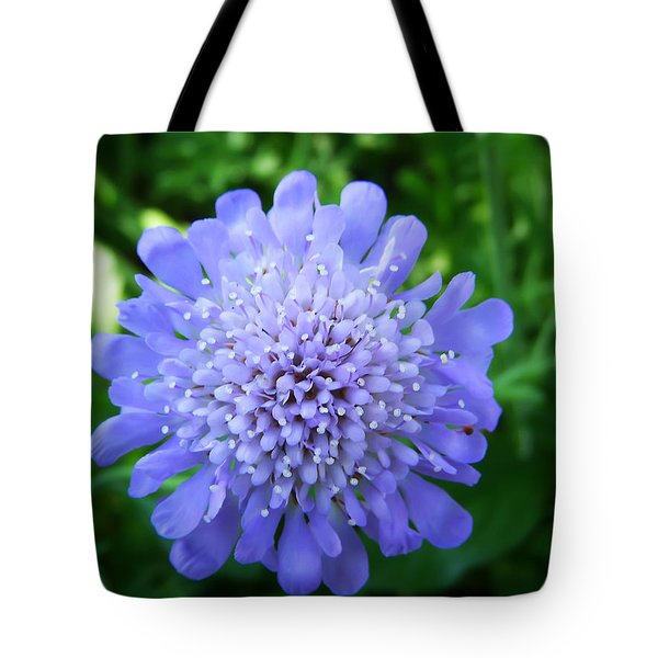 Blue Tote Bag by Aimee L Maher Photography and Art