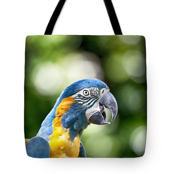 Blue And Gold Macaw V2 Tote Bag by Douglas Barnard