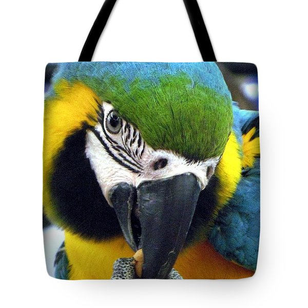 Blue And Gold Macaw With A Peanut Tote Bag by  Andrea Lazar