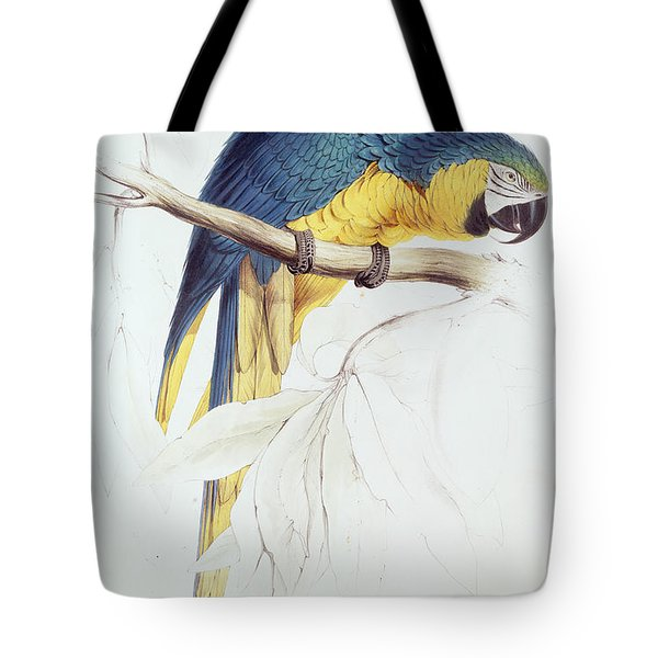 Blue And Yellow Macaw Tote Bag by Edward Lear