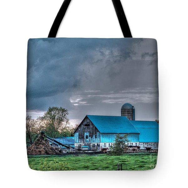 Blue Barn Tote Bag by Bianca Nadeau
