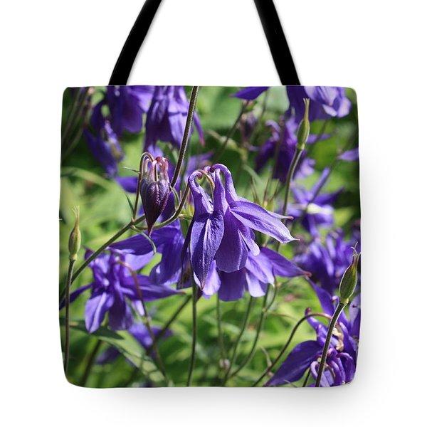 Blue Columbine Flower Tote Bag by Carol Groenen