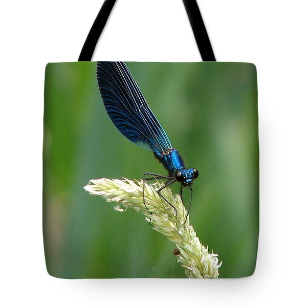 Blue Damselfly Tote Bag by Ramona Johnston