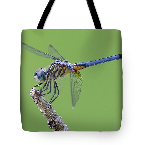Blue Dasher Dragonfly Tote Bag by Ester  Rogers