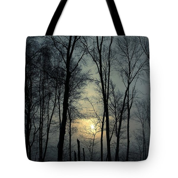 Blue Daybreak Tote Bag by Karol Livote