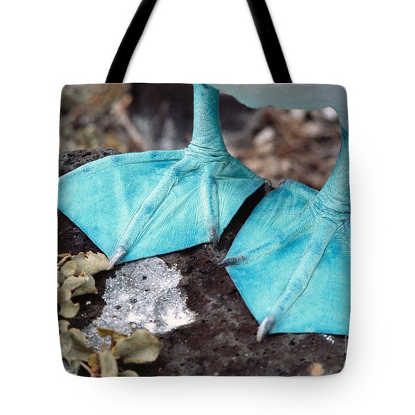 Blue-footed Booby Feet Tote Bag by Ron Sanford