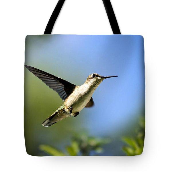 Blue Green Hummingbird Art Tote Bag by Christina Rollo
