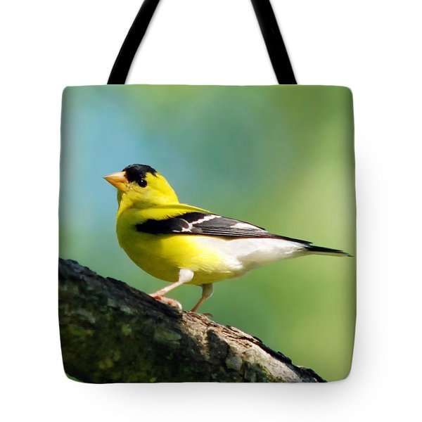 Blue Heart Goldfinch Tote Bag by Christina Rollo