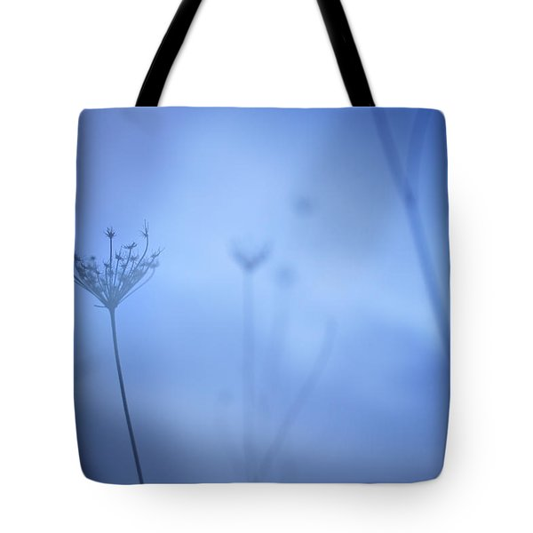Blue Hour In The Paradise Tote Bag by Guido Montanes Castillo