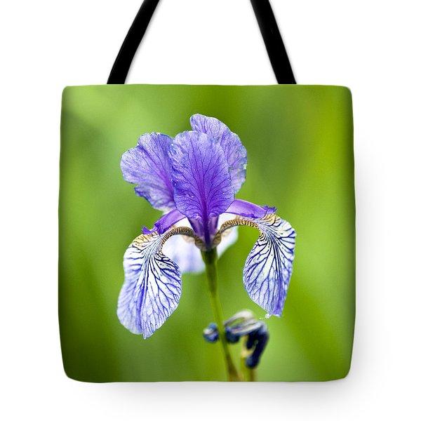 Blue Iris Tote Bag by Frank Tschakert