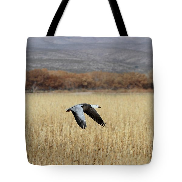 Blue Morph In Flight Tote Bag by Ruth Jolly