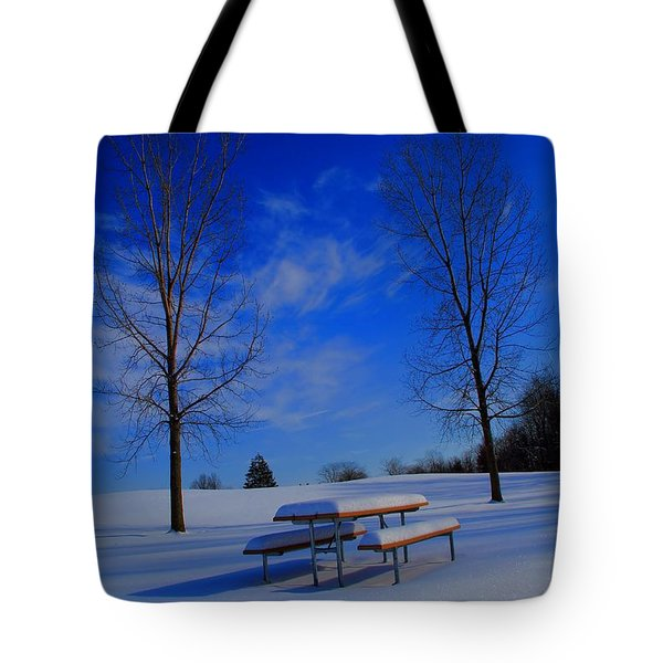 Blue On A Snowy Day Tote Bag by Dan Sproul