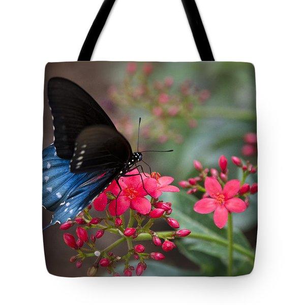 Blue Swallowtail Butterfly  Tote Bag by Saija  Lehtonen