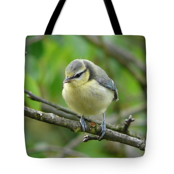 Blue Tit In A Cherry Tree Tote Bag by Valerie Ornstein